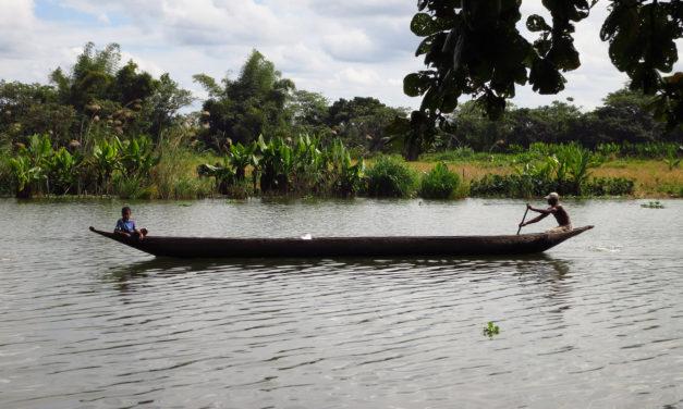 Madagascar 4 Photos