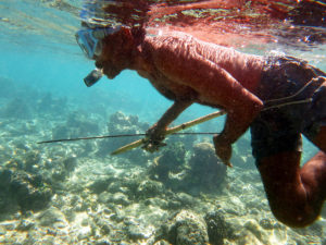 Papan'mwana diving for octopus to use as bait for line fishing... he planned to catch them with a small metal or bamboo spear.
