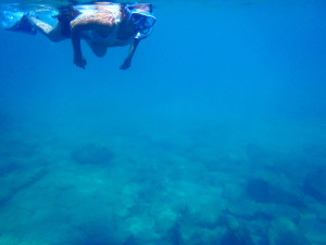 Looking under the surface. (Snorkeling around Nosy Mitsio recently for our anniversary.)
