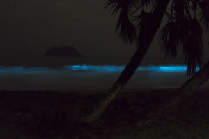 The bioluminescent waves near our village on Nosy Mitsio! Taken with a long exposure.
