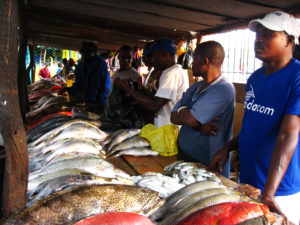 A fish market in Mozambique