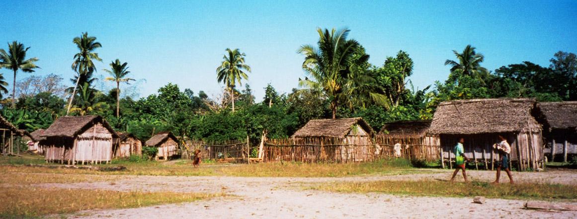 A rural village on the east coast of Madagascar.