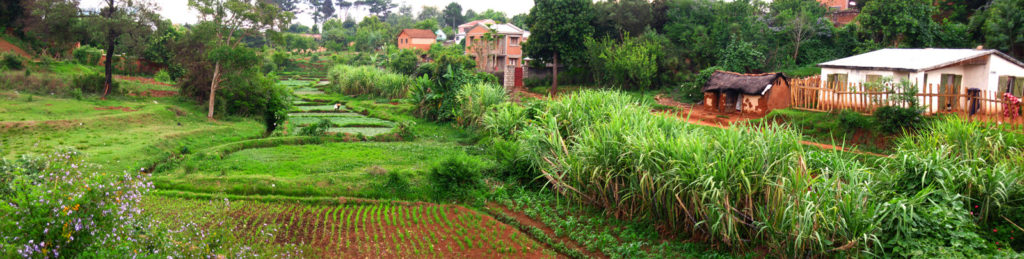 A panorama of fields in Antsirabe, taken from the main road between our house and the market.