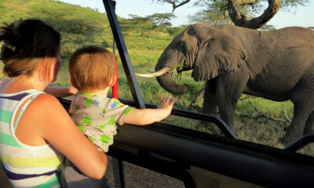 South Africa & Tanzania 2013 Photos