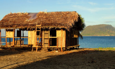 VIDEO: Building a Home on Nosy Mitsio