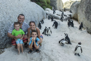 Visiting the Penguins on Boulders Beach in South Africa!