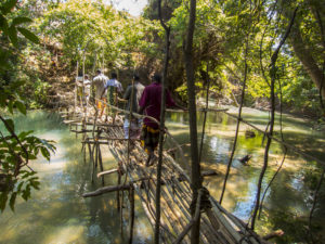 The bridge to enter the cave every 5 years in the Ankarana reserve