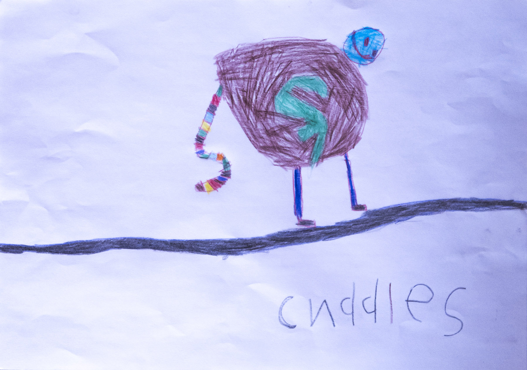 "David drew a picture of Cuddles, saying it was ""so we can remember what he looked like."""