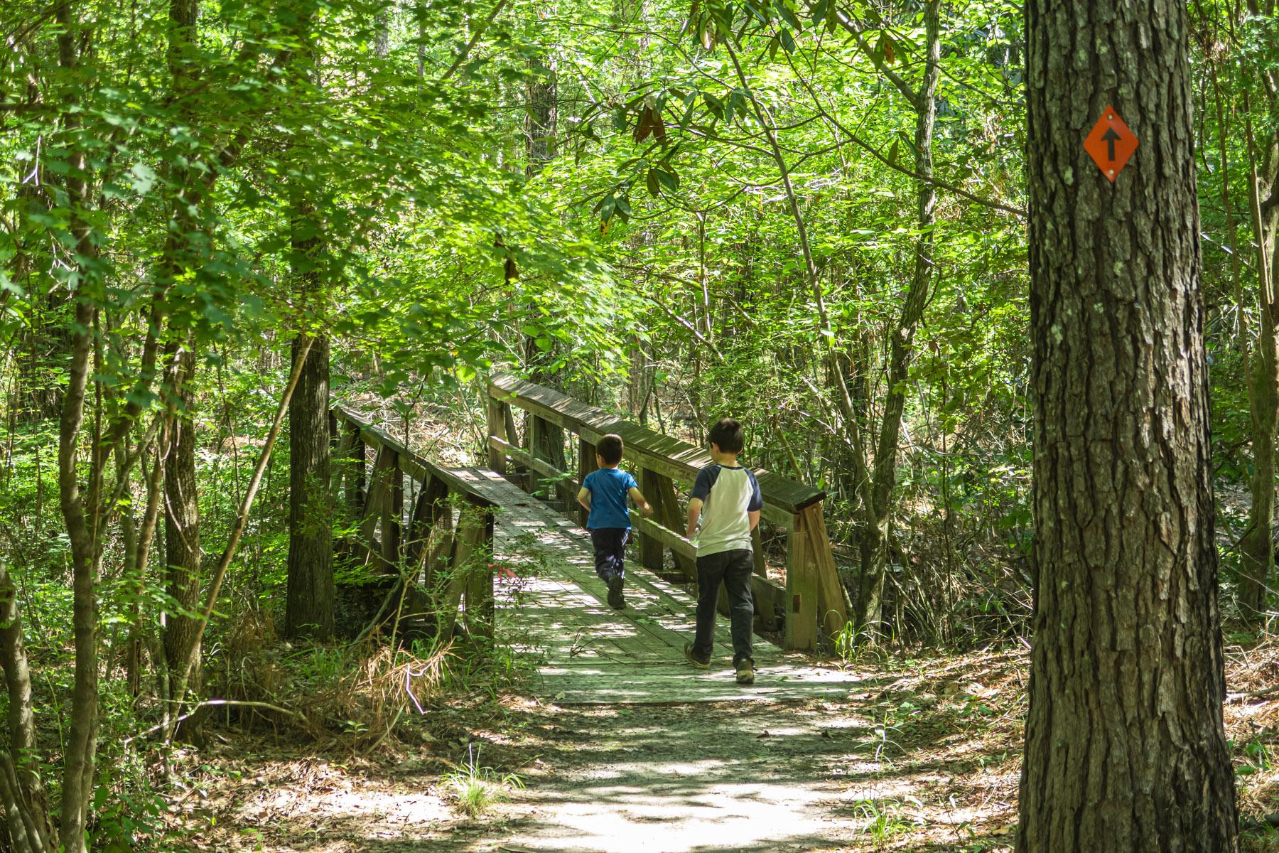 Matimu and David crossing a bridge on a hike in Louisiana