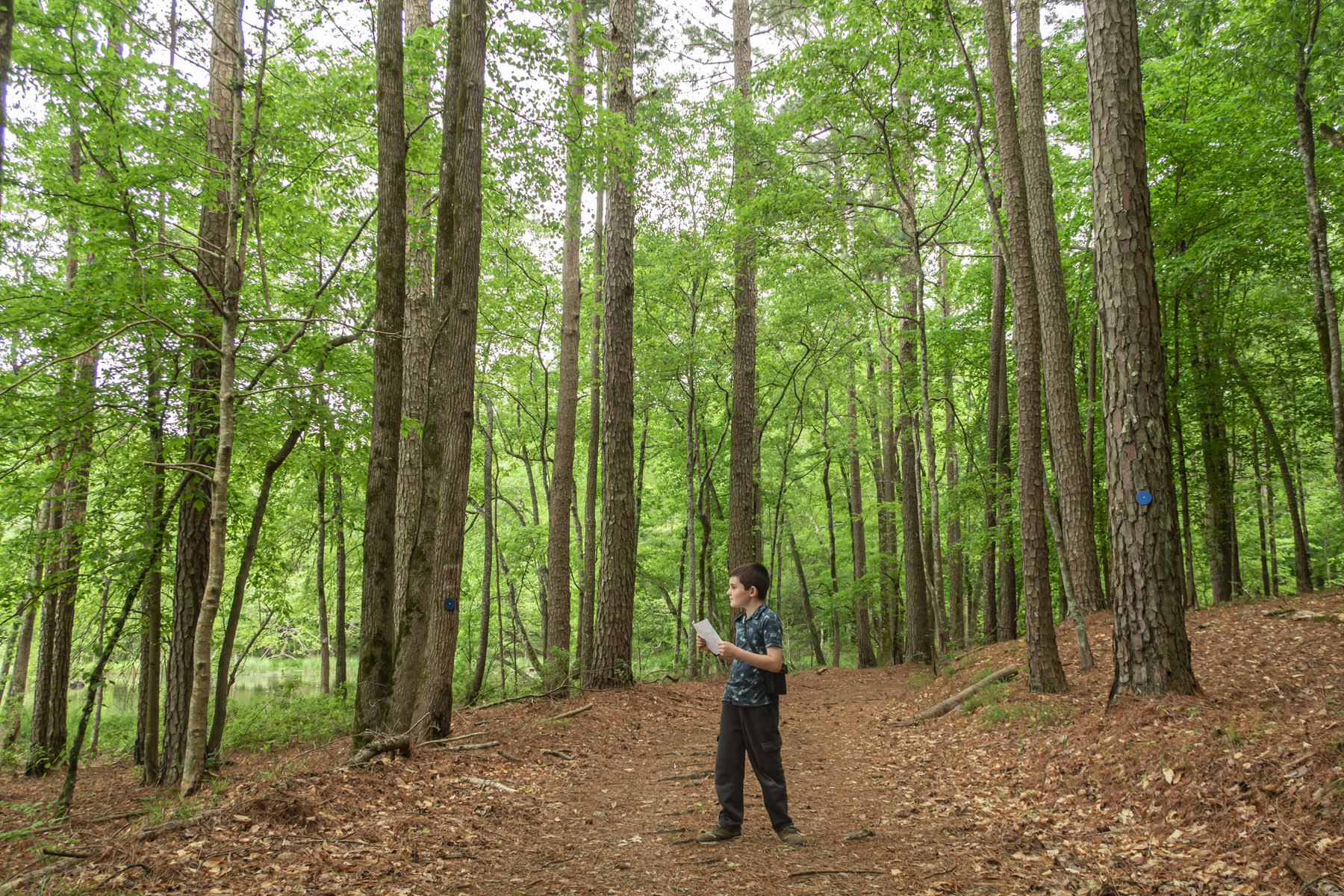 Matimu reading a trail map on a hike in southern Arkansas.